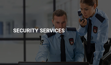 gallery/security-services